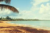 ホット熱帯ビーチ — ストック写真