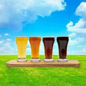 Beer Fest — Stock Photo
