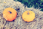 Pumpkins on straw — Stock Photo