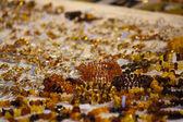 Mineralische juwelen — Stockfoto