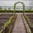 Greenhouse at spring — Stock Photo