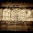 Spider web — Stockfoto #19994215