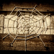 Foto Stock: Spider web