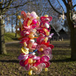 Stock Photo: Colorful pacifiers in tree