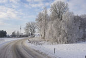 Winter countryside — Stockfoto