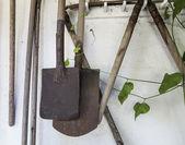 Sztuka pik i roślin — Zdjęcie stockowe