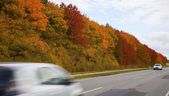 Autumn in Denmark — Stock Photo