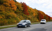 Indian summer road — Stock Photo