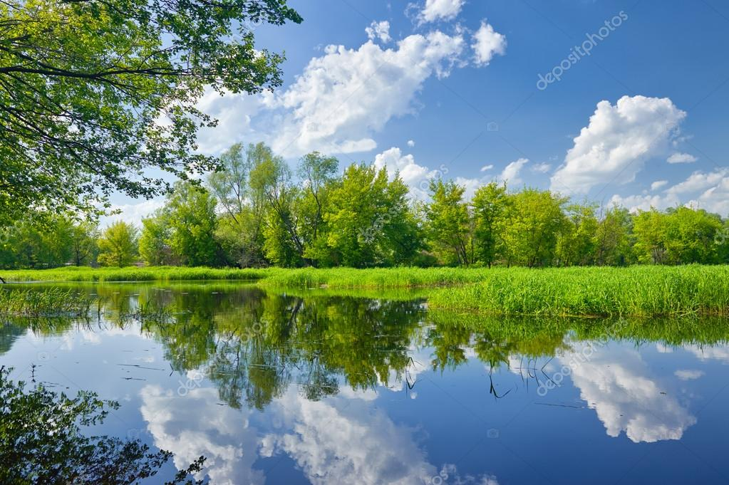 Фотообои Summer landscape with Narew river and clouds on the blue sky