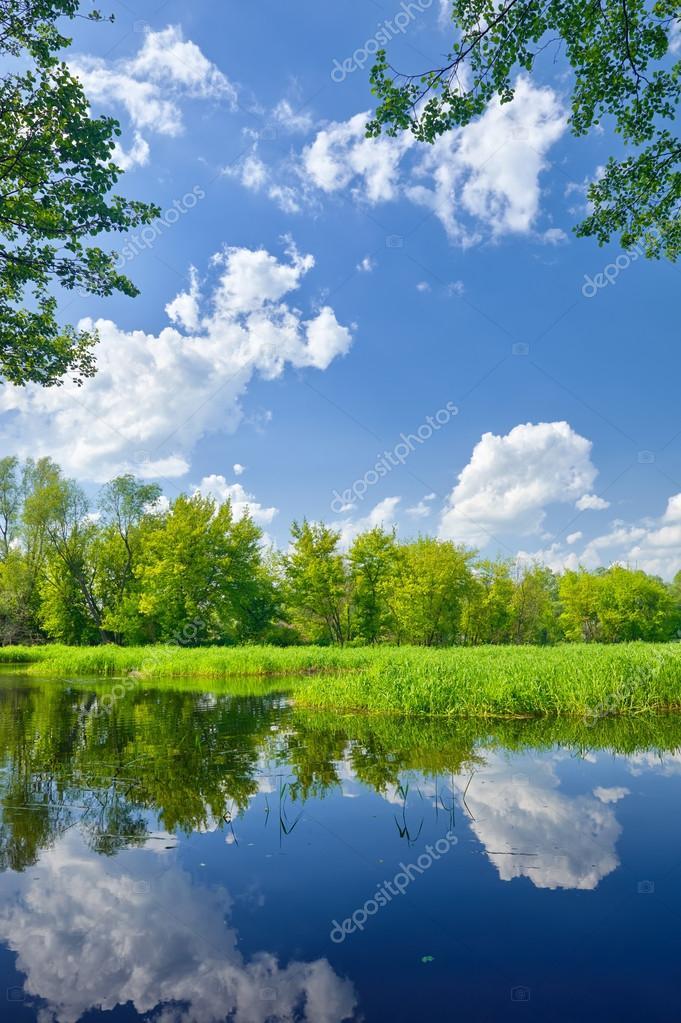 Фотообои Летний пейзаж с рекой Нарев и облака на голубое небо.