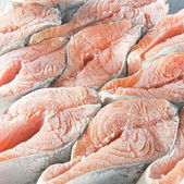 冷凍サーモン ステーキ — ストック写真