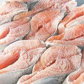 冷冻三文鱼牛排 — 图库照片