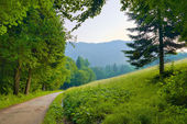 Morning landscape with path by the park in the mountains. — Stock Photo