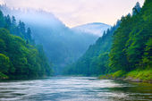 The gorge of mountain river in the morning — Stock Photo