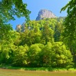 Peak of the Sokolica mountain in Pieniny. — Stock Photo
