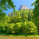 Peak of the Sokolica mountain in Pieniny. — Stock Photo