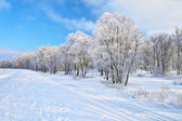 Snowy landscape in the Narew river valley. Beautiful winter trail. — Stock Photo