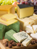 The set of different kinds of cheeses. Dairy collection. — Stock Photo