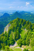 Summer landscape. The Pieniny Mountains nature reserve. — Stock Photo