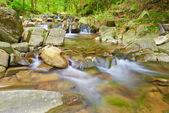The Zaskalnik Waterfall in the Pieniny Mountains Range — Stock Photo