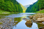 The Dunajec River Gorge. Pieniny National Park. — Stock Photo