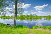 The Narew River Scenery. Old boat on riverbank. — Stock Photo