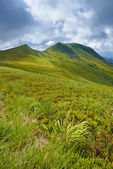 Bieszczady National Park. Carpathian Mountains grass landscape. — Stock Photo