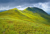 Bieszczady National Park Carpathian Mountains grass landscape — Stock Photo