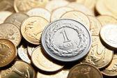 Polish currency with zloty coins — Stok fotoğraf