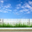 Wooden fence with green grass and blue sky — Stock Photo #27883967
