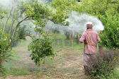 Farmer spray pesticide — Stock Photo