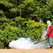 Fogging to prevent spread of dengue fever — Stock Photo