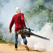 Stock Photo: Fogging to prevent spread of dengue fever