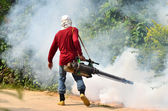 Mlžení zabránit šíření horečka dengue — Stock fotografie