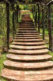 Stairway in garden — Stock Photo