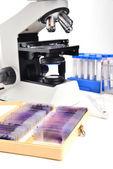Mikroskop med laboratorieutrustning — Stockfoto