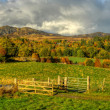 Ben Y Vrackie, Pitlochry — Stock Photo