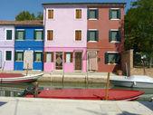 Vida en laguna - burano - italia - 656 — Foto de Stock