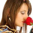 There is no rose without thorns 277 — Stock Photo