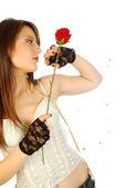 Tu jest nie ma róży bez kolców 287 — Zdjęcie stockowe