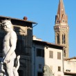 Statue of Neptune - Florence - Italy - 210 — Stock Photo