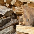 Stock Photo: Firewood ready for winter