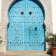 Stock Photo: Door to Tunisi- Tunis - North Africa