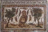 The Mosaics of Tunisia - El Jem - Tunisia — ストック写真