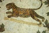 The Mosaics of Tunisia - El Jem - Tunisia — Stockfoto