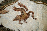 The Mosaics of Tunisia - El Jem - Tunisia — Photo