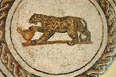 The Mosaics of Tunisia - El Jem - Tunisia — Stock Photo
