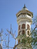 ミナレットとチュニジアのモスク — ストック写真