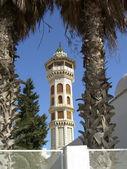 Minarety a mešity v tunisku — Stock fotografie