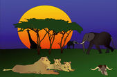 Africa - The wilds of Africa — Stock Photo